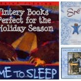 Our Holiday Books Shelves Are Full!