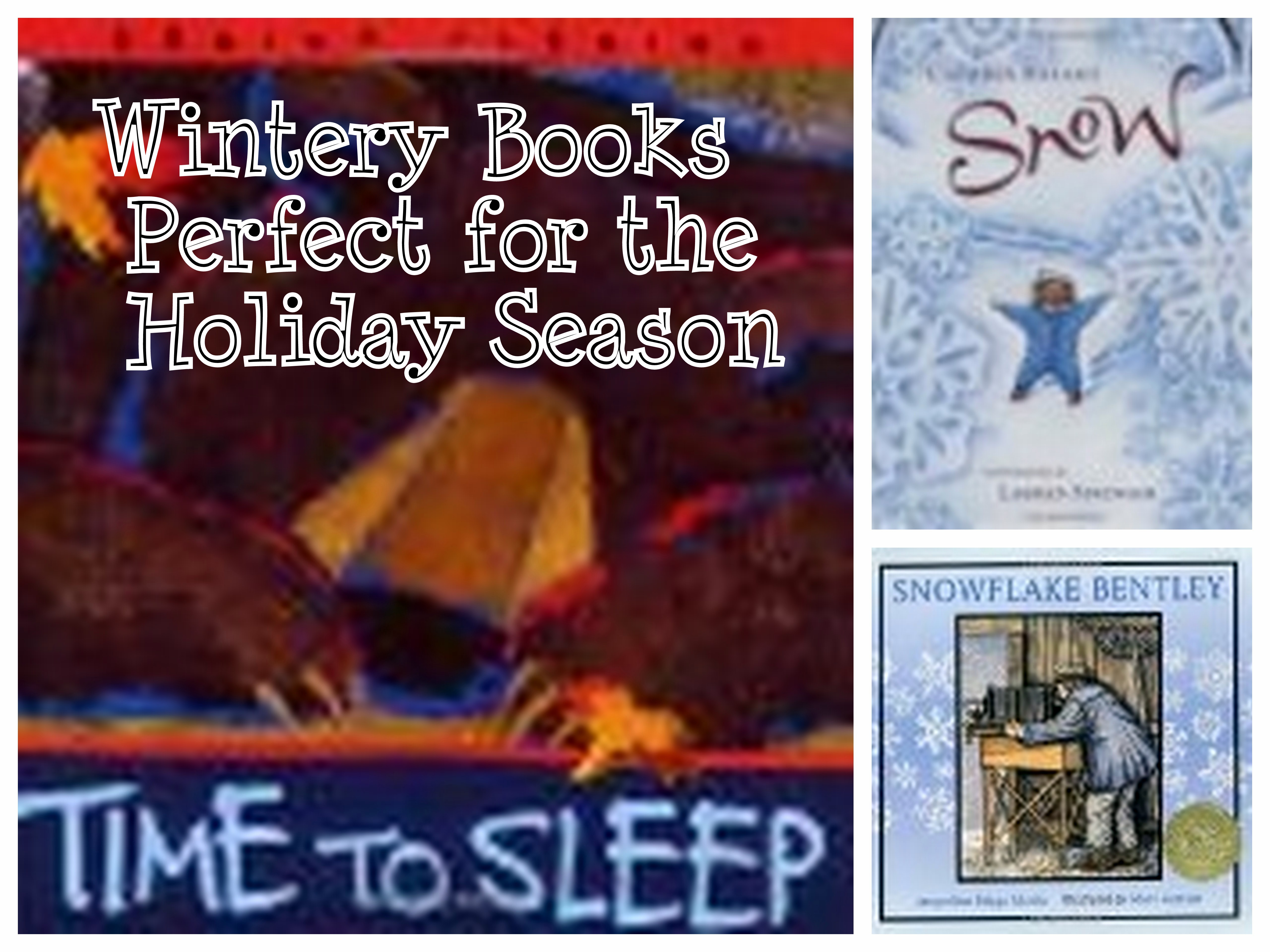 Wintery Books Perfect for the Holiday Season