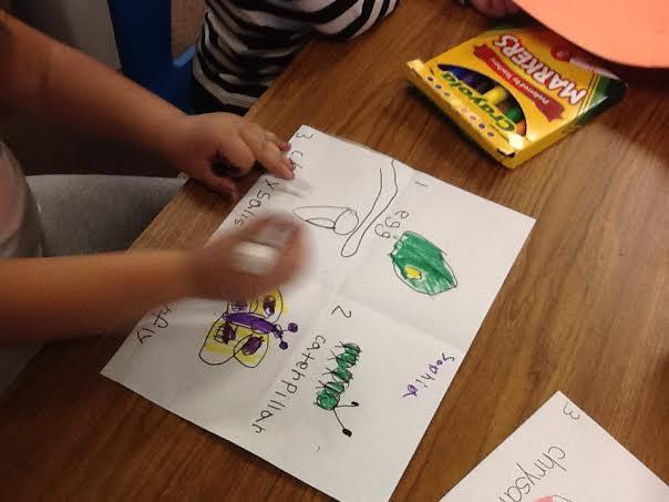 Butterflies Flutter Into Kindergarten