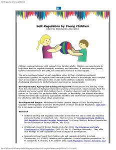 Self Regulation by Young Children 1